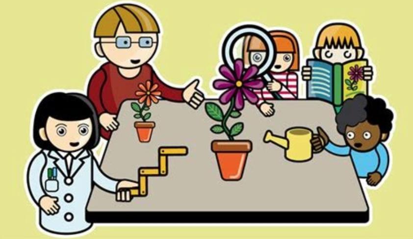 Sciences et citoyenneté au cycle 1